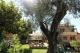 Casa in Vendita in Liguria. Andora - Nel primo entroterra