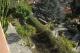 Andora - Rif 695 - Vista giardino